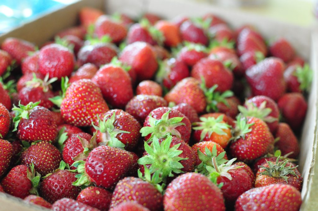Cheesecake Filled Strawberries