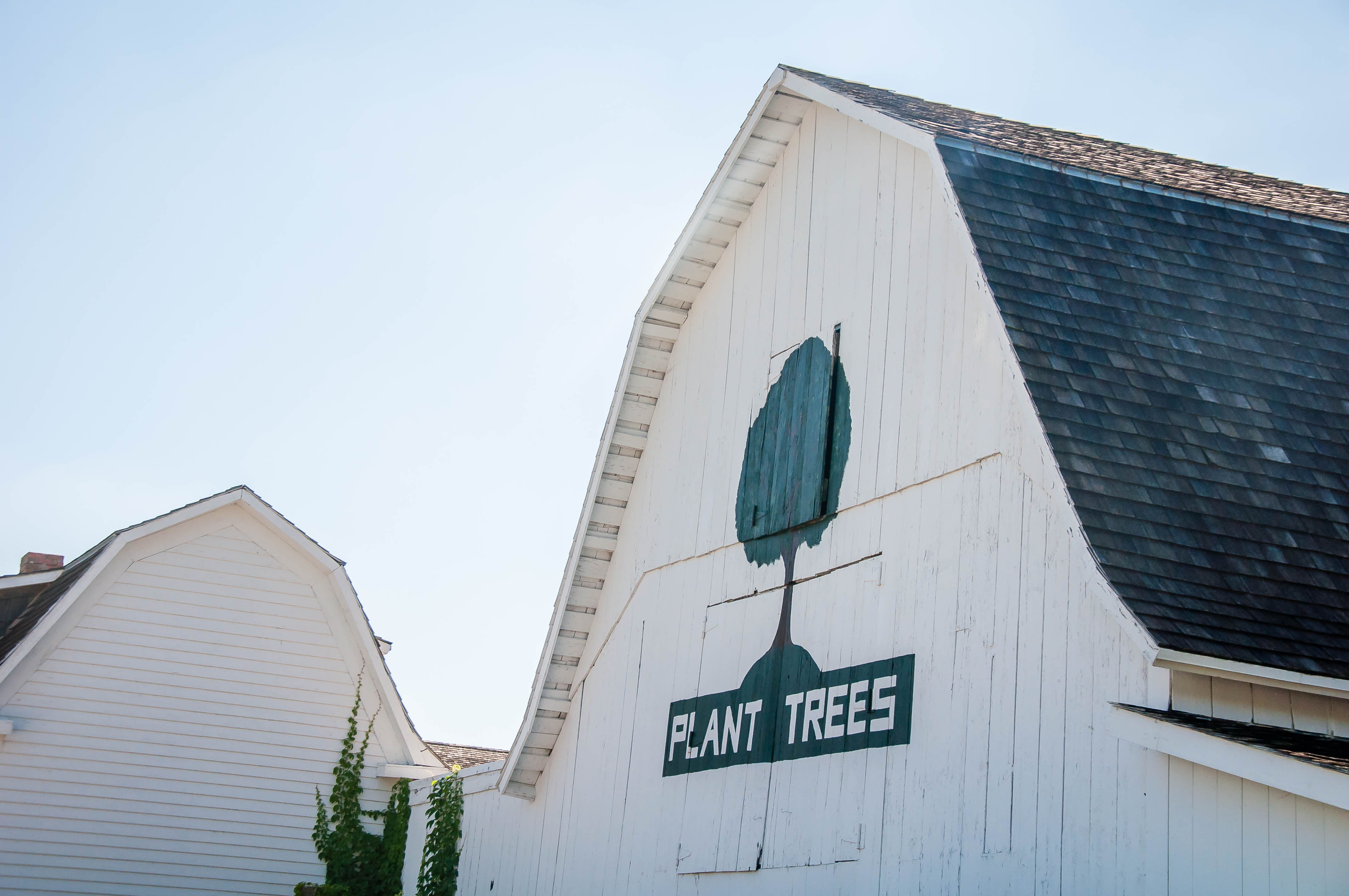 Apple Orchard - Nebraska City