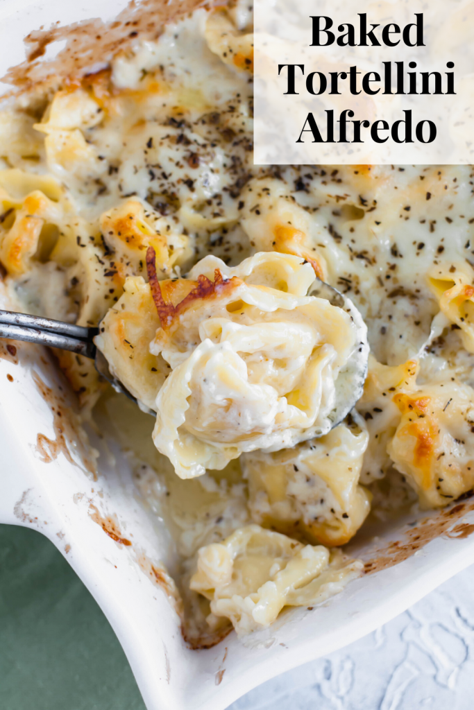This Baked Tortellini Alfredo is the ultimate comfort food. Cheese tortellini tossed in alfredo sauce, topped with mozzarella and baked to perfection.